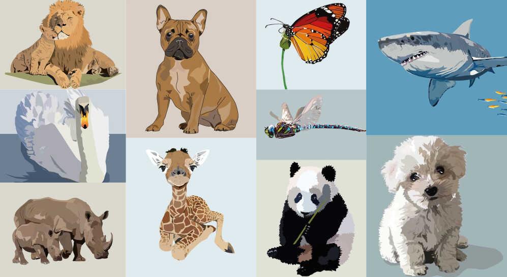 dyr-&-insekter